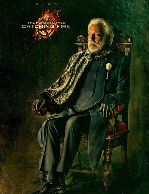 catching-fire-snow-poster